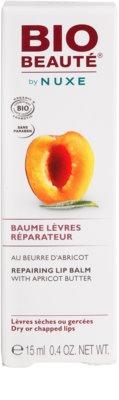 Bio Beauté by Nuxe Lips regeneracijski balzam za ustnice z mareličnim maslom 3