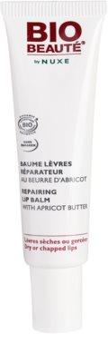 Bio Beauté by Nuxe Lips bálsamo labial reparador con mantequilla de albaricoque