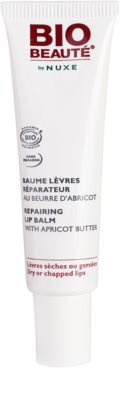 Bio Beauté by Nuxe Lips regeneracijski balzam za ustnice z mareličnim maslom