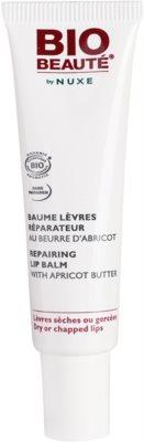 Bio Beauté by Nuxe Lips відновлюючий бальзам для губ з абрикосовим маслом