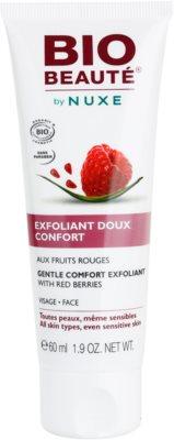 Bio Beauté by Nuxe Masks and Scrubs exfoliante facial suave de frutos rojos