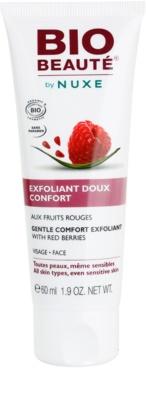 Bio Beauté by Nuxe Masks and Scrubs nežen piling za obraz iz rdečih jagod