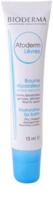 Bioderma Atoderm bálsamo regenerador  para lábios secos