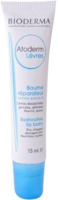 Bioderma Atoderm regeneracijski balzam za suhe ustnice