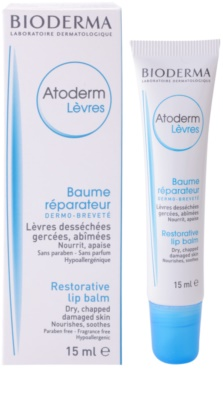 Bioderma Atoderm bálsamo regenerador  para lábios secos 1