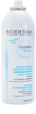 Bioderma Hydrabio Brume spray pe baza de apa pentru reimprospatare pentru piele sensibila 1
