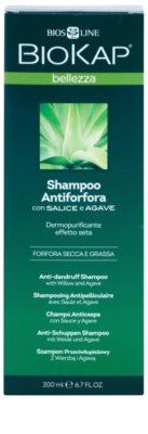 Biokap Beauty Shampoo gegen Schuppen 2