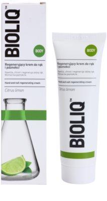 Bioliq Body regenerierende Creme für Hände und Fingernägel 1
