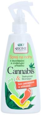 Bione Cosmetics Cannabis deodorant pentru picioare