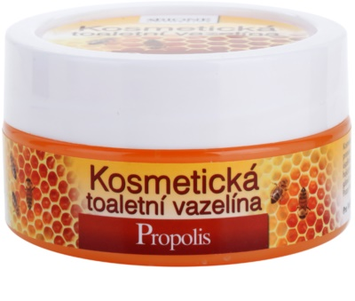 Bione Cosmetics Honey + Q10 kosmetische Vaseline