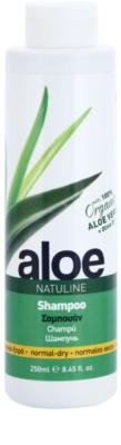 Bodyfarm Natuline Aloe champú para cabello normal y seco con aloe vera