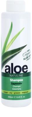 Bodyfarm Natuline Aloe champô para cabelos oleosos com aloe vera