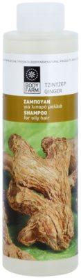 Bodyfarm Ginger champú y acondicionador  para cabello graso
