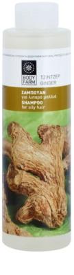 Bodyfarm Ginger šampon in balzam za mastne lase