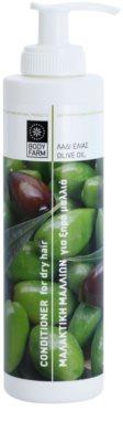 Bodyfarm Olive Oil condicionador hidratante para cabelo seco