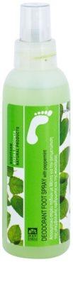 Bodyfarm Feet Care Peppermint desodorizante para pés em spray