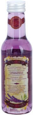 Bohemia Gifts & Cosmetics Lavender champô para cabelo para todos os tipos de cabelos