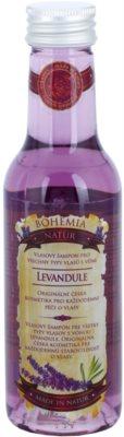 Bohemia Gifts & Cosmetics Lavender champú para cabello para todo tipo de cabello