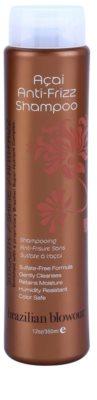 Brazilian Blowout Acai šampon proti krepastim lasem