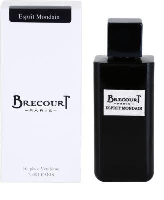 Brecourt Esprit Mondain eau de parfum férfiaknak
