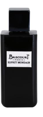 Brecourt Esprit Mondain Eau De Parfum pentru barbati 2