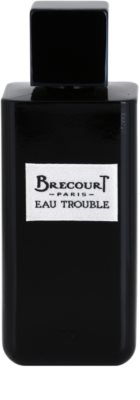 Brecourt Eau Trouble Eau de Parfum für Damen 2