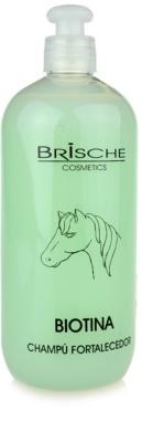 Brische Biotina stärkendes Shampoo