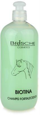 Brische Biotina szampon wzmacniający