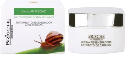 Brische Crema Anti-Edad Anti-Faltencreme mit Snail Extract 1