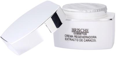 Brische Crema Anti-Edad Anti-Faltencreme mit Snail Extract 2
