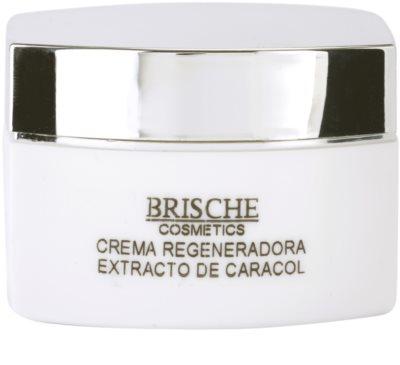Brische Crema Anti-Edad Anti-Faltencreme mit Snail Extract