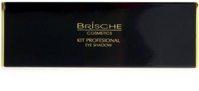 Brische Kit Profesional paleta farduri de ochi 2