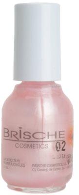 Brische Nail Polish лак для нігтів