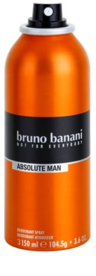 Bruno Banani Absolute Man Deo Spray for Men 1