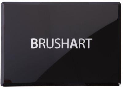 BrushArt 60 Color Palette mit Lidschatten und Rouge inkl. Spiegel und Pinsel 1