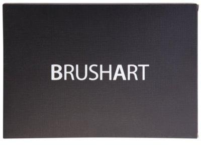 BrushArt 60 Color Palette mit Lidschatten und Rouge inkl. Spiegel und Pinsel 2