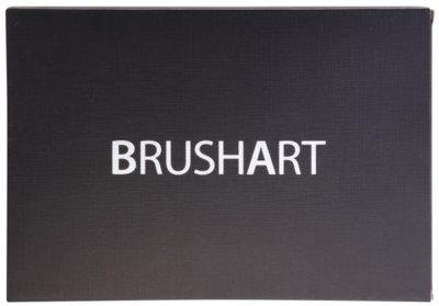 BrushArt 88 Color paleta senčil za oči 2