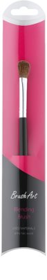 BrushArt Eye pensula pentru aplicarea fardului de pleoape 1