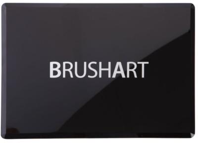 BrushArt Color gama de produse cosmetice make-up cu oglinda si aplicator 1