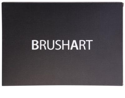 BrushArt Color gama de produse cosmetice make-up cu oglinda si aplicator 2