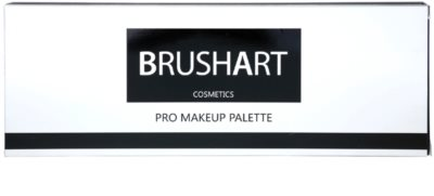 BrushArt Pro Makeup paleta de sombras de ojos y coloretes con un espejo pequeño 2