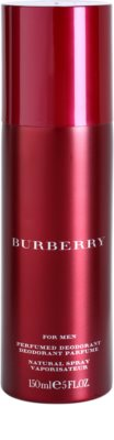 Burberry for Men (1995) deospray pro muže 2