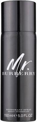 Burberry Mr. Burberry deospray pentru barbati