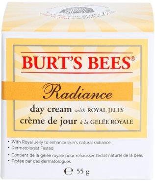 Burt´s Bees Radiance Hautcreme mit Gelée Royal 2