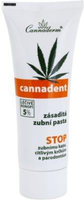 Cannaderm Cannadent bazična zobna pasta z zmanjšanim penjenjem