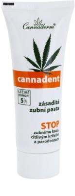 Cannaderm Cannadent zásaditá zubní pasta se sníženou pěnivosti