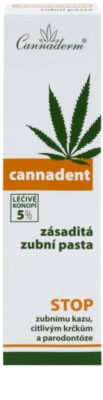 Cannaderm Cannadent zásaditá zubní pasta se sníženou pěnivosti 2