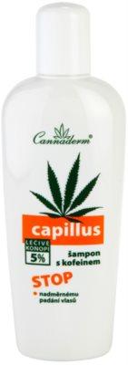 Cannaderm Capillus sampon pe baza de cafeina impotriva caderii parului