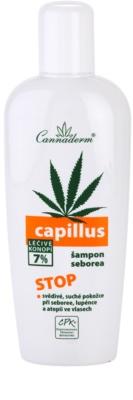 Cannaderm Capillus szampon do włosów tłustych