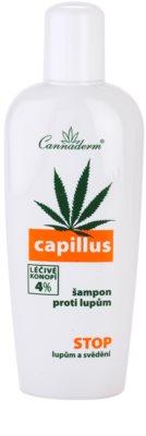Cannaderm Capillus šampon proti lupům